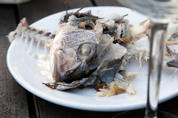 abgegessener Teller, Fischkarkasse