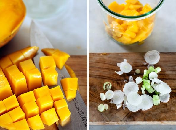 Zubereitung der Mangisalsa