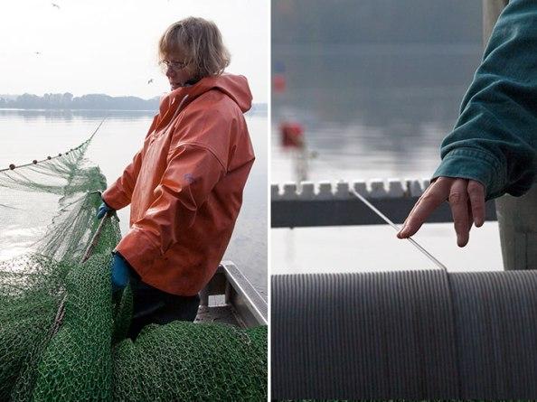 Sabine Schwarten, Zugnetzfischerei am Eutiner See